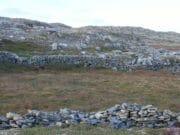 Rock Wall (11)