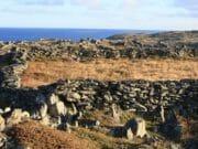 Rock Wall (14)