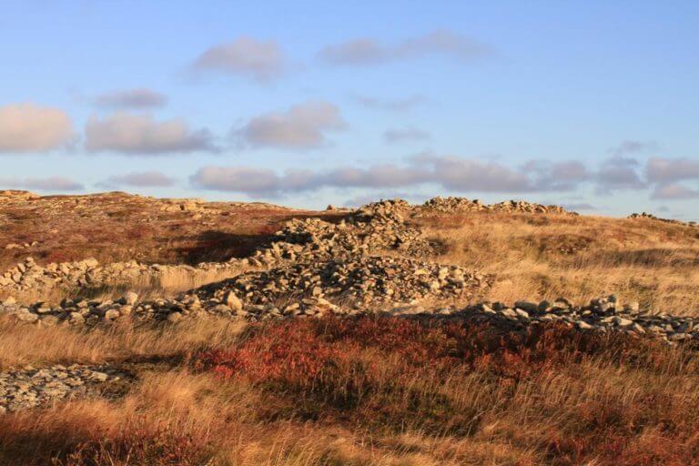 Rock Wall (6)